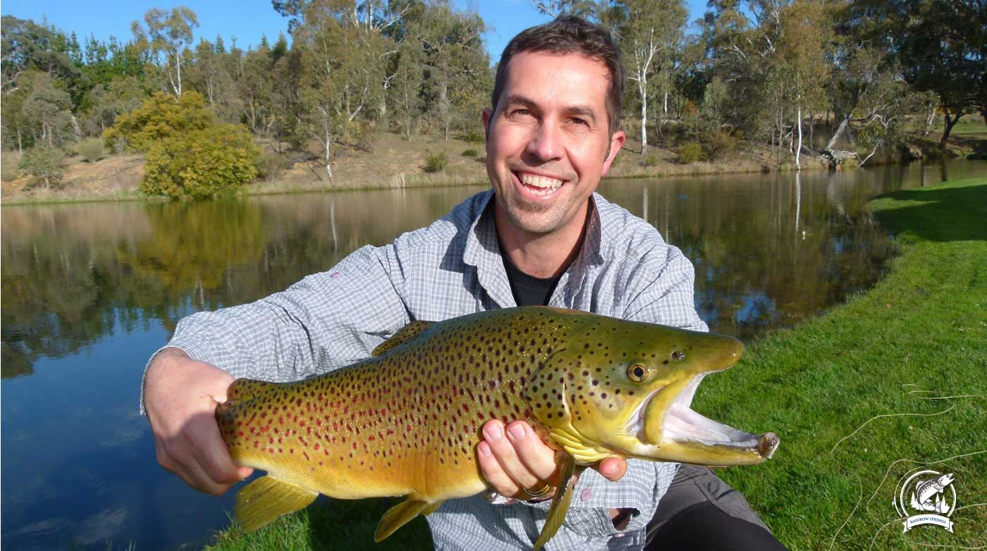 RAINBOW SPRINGS FLY FISHING SCHOOLONE OF AUSTRALIA'S PREMIER FLY FISHING SCHOOLS WITH WORLD CLASS FACILITIES